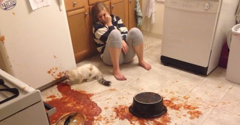 15+ Cats Who Just Want To Watch The World Burn